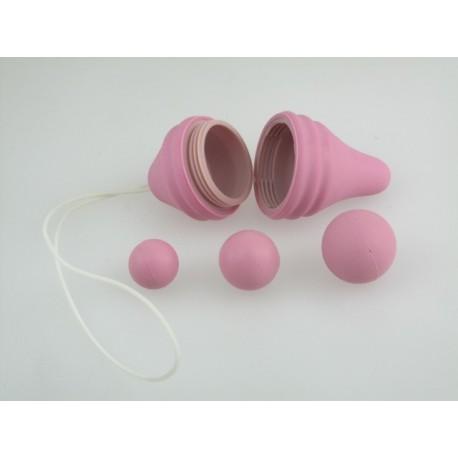 Pelvix concepto - rehabilitación pélvica - perineal