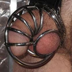 Jaula de castidad: concha de caracol