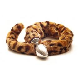 Rosebud : Cola de tigre leopardo